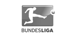 Bundesliga german football league logo